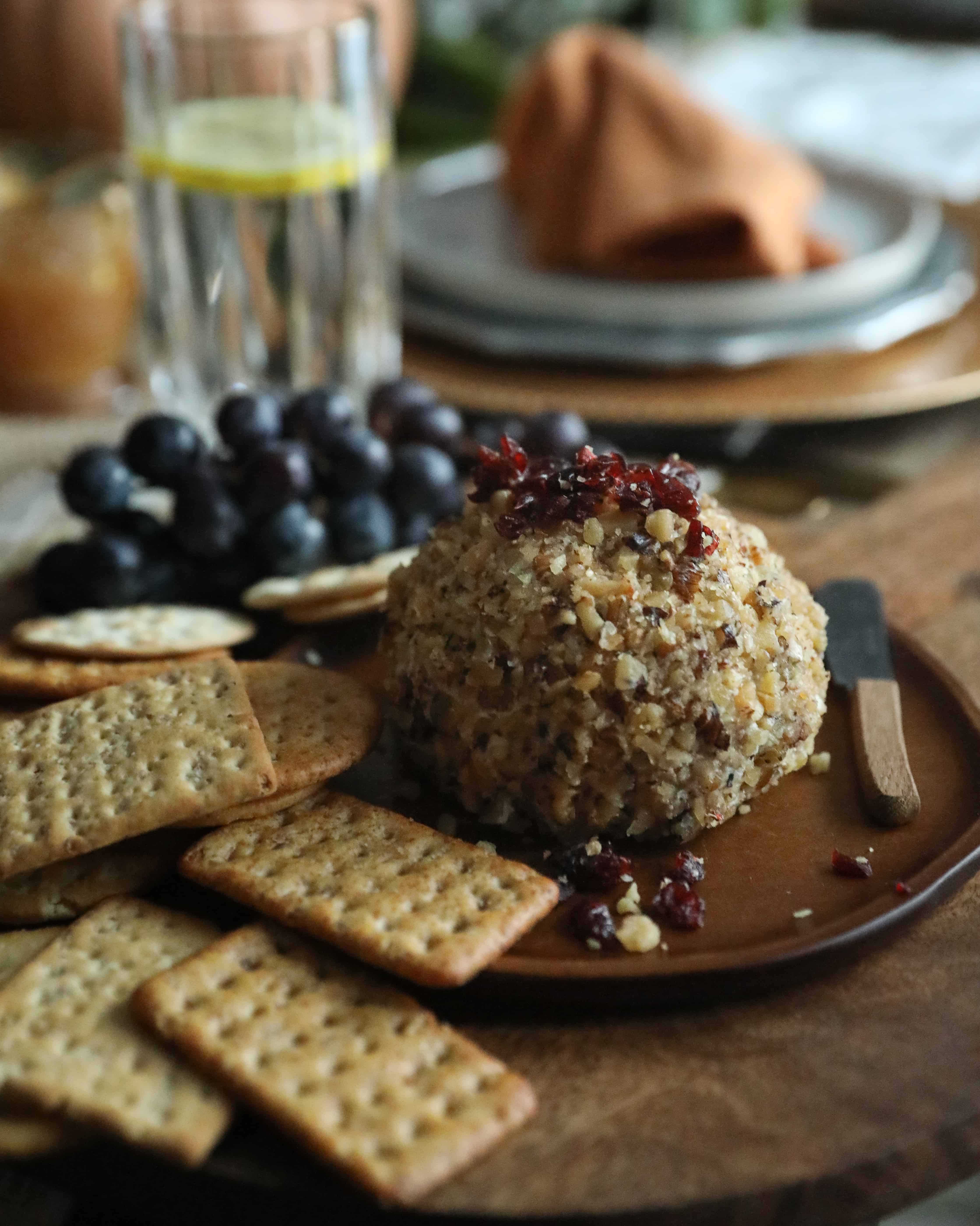 Cranberry Blue Cheese Ball